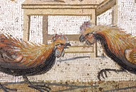 Floor Mosaic with Cockfight