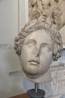 Head of Lycean Apollo