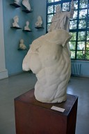 Plaster Cast Collection, Gaddi Torso