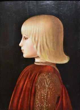 Portrait of a Boy (Guidobaldo da Montefeltro?)